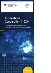 DIN lang Flyer ZIM international